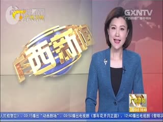 迈入新时代 开启新征程 广西各界坚决拥护宪法修正案