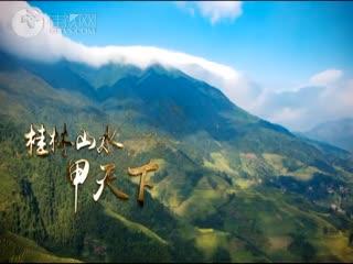 《桂林农产县长代言》宣传片