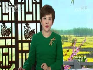 【2019传奇中国节・清明】湘江战役:中央红军长征的悲壮史诗